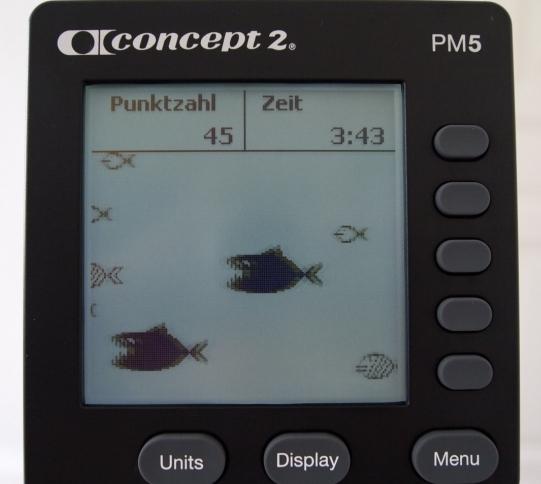 Concept 2 Rudergerät Computer