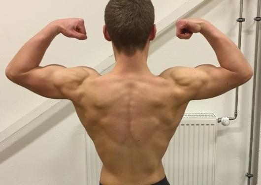 Muskelwachstum – Kann man den Muskelwachstum beschleunigen?