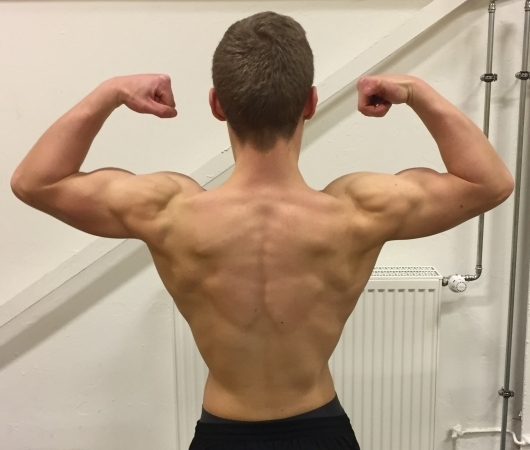 Muskelaufbau zuhause Training Ernährung & Trainingsplan