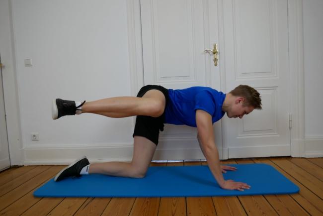 Gymnastik Übung Hund