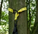 Trx Schlingentrainer Befestigung Baum