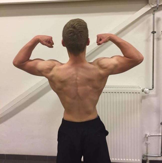 Muskelaufbau Trainingsplan zum Abnehmen